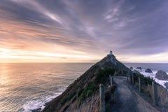 Klumppunktfyr i Nya Zeeland Arkivbilder