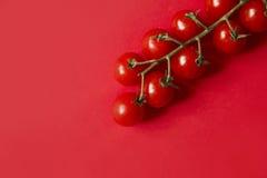 Klungatomat på rött Arkivfoto