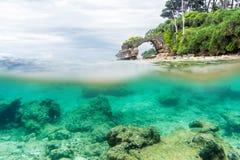 Kluven sikt över och under havsyttersida med den frodiga tropiska kusten ovanför vattenlinje Royaltyfria Foton