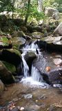 Kluvet rusa för vattenfall Fotografering för Bildbyråer