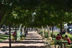 Klyde Warren Park in Dallas, Texas Royalty Free Stock Photography