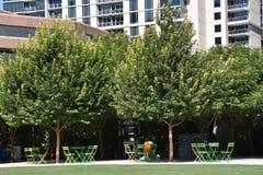 Klyde Warren Park in Dallas, Texas Royalty Free Stock Photo