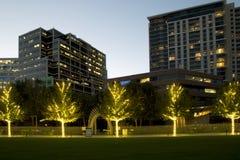 Klyde Warren Park och moderna byggnader på solnedgång Arkivbild