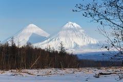 Klyuchevskoy火山和卡梅尼火山火山在堪察加半岛 免版税库存照片