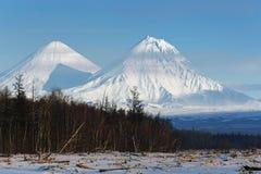 Klyuchevskoy vulkan och Kamen Volcano på den Kamchatka halvön Arkivbild