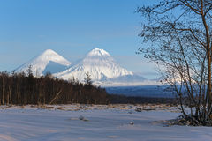 Klyuchevskoy vulkan och Kamen Volcano på Kamchatkaen Fotografering för Bildbyråer