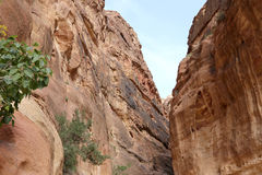 1 2km长的道路(Siq)向Petra城市,约旦 免版税库存图片