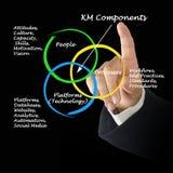 Km-Componenten Stock Afbeelding