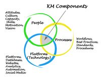 KM Components. Diagram of  knowledge management Components Royalty Free Stock Photography