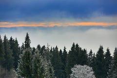 220 km distant peaks of the Alp, Cloudes and trees, winter landscape in Šumava in Železná Ruda, Czech republic Stock Photography