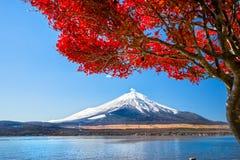 100km góry Fuji Japonii uwagi na zachodniej zimy Tokio zdjęcia stock