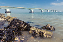 5 Km long Zeelandbrug, Zeeland, Netherlands Royalty Free Stock Photo