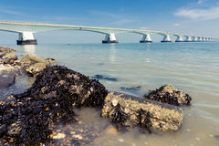5 Km long Zeelandbrug, Zeeland, Netherlands Royalty Free Stock Images