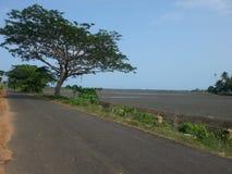 8 km nordost av Thakhek Arkivfoton