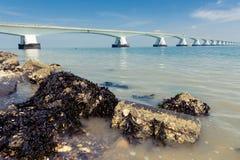 5 km snakken Zeelandbrug, Zeeland, Nederland Royalty-vrije Stock Afbeeldingen