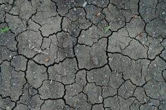 Knäcka jordtextur Arkivfoto