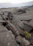 knäcker lava Arkivfoton