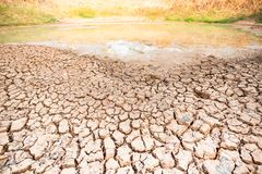 Knäckt jord i dammet, torka i sommar arkivfoto