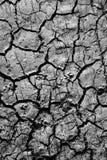 knäckt textur för torr jord Royaltyfri Foto