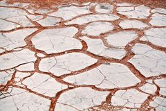 Knäckt vit torr lerayttersida på orange sandbakgrund i Etosha saltar closeupen för den bästa sikten för den pannaNamib öknen royaltyfri foto