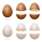 Knäckte brutna ägg öppnar illustrationen för vektorn för symboler för den easter den äggskalstunna designen 3d realistiska uppsät Arkivbild
