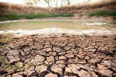 Kn?ckt jord i dammet, torka i Thailand arkivbilder