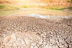 Kn?ckt jord i dammet, torka i Thailand royaltyfria bilder