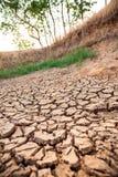 Kn?ckt jord i dammet, torka i Thailand arkivfoton