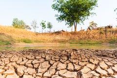 Kn?ckt jord i dammet, torka i Thailand royaltyfri foto