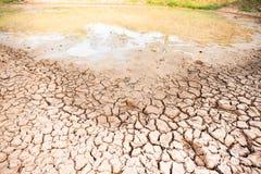 Kn?ckt jord i dammet, torka i Thailand fotografering för bildbyråer