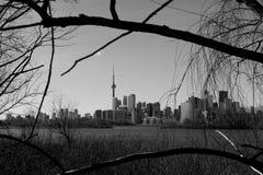 KN Turm- und Toronto-Skyline nachts lizenzfreie stockbilder