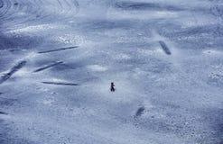 Knabenalter im Winter, Tag, im Freien stockbilder