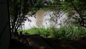Knacka floden Thailand royaltyfria bilder