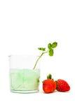 Knackendes Glas und Erdbeeren Stockfotografie
