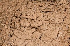 Knackt die Dürre auf Spanien-` s trockenen Gebieten Schlamm unfruchtbar stockfotografie