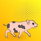 Knall-Art Background Pig Pet Mini-Schwein Vektor einer Weinlese, Retrostilbildgeschichte Lizenzfreies Stockbild