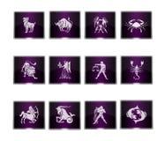 Knappar - zodiaktecken Arkivfoto