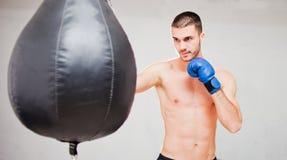 Knappe geconcentreerde mannelijke bokser stock afbeeldingen