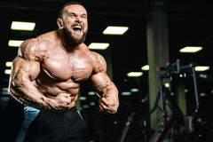 Knappe geschikte Kaukasische spiermens die zijn spieren in gymnastiek buigen Royalty-vrije Stock Foto