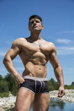 Knappe, hete jonge bodybuilder shirtless in boomstammen Royalty-vrije Stock Afbeelding
