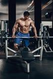 Knappe machts atletische mens die op dieet omhoog pompend spieren met domoor en barbell opleiden De sterke bodybuilder, perfectio Stock Fotografie