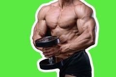 Knappe machts atletische mens die op dieet omhoog pompend spieren opleiden Stock Afbeeldingen