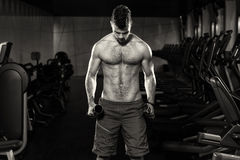 Knappe Mens die Bicepsen met Domoren uitoefenen Royalty-vrije Stock Afbeelding
