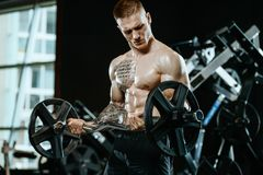 Knappe model jonge mens opleidingswapens in gymnastiek Stock Afbeeldingen