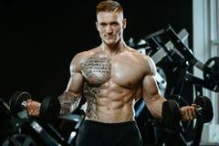 Knappe model jonge mens opleidingswapens in gymnastiek Royalty-vrije Stock Afbeelding