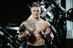 Knappe model jonge mens opleidingswapens in gymnastiek Royalty-vrije Stock Foto