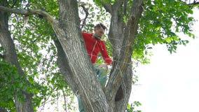 Knappe modieuze mens in rode hoody en gescheurde jeans op de boom stock video