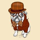Knappe pug met glazen en een hoed Vectorillustratie voor een prentbriefkaar of een affiche, druk voor kleren Hond hipster in kler Royalty-vrije Stock Fotografie
