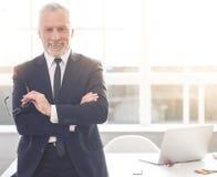 Knappe rijpe zakenman stock foto's