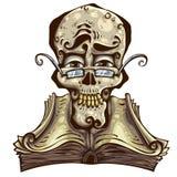 Knappe schedel. Stock Foto
